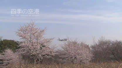 [Trailer] 四季の空港 (The four seasons of airport) -予告編3-